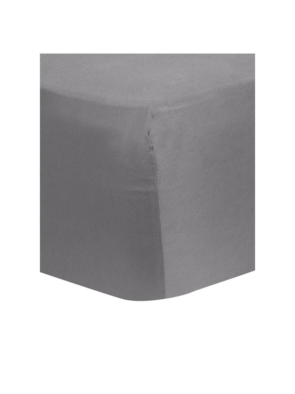 Boxspring-Spannbettlaken Comfort in Dunkelgrau, Baumwollsatin, Webart: Satin, leicht glänzend, Dunkelgrau, 200 x 200 cm