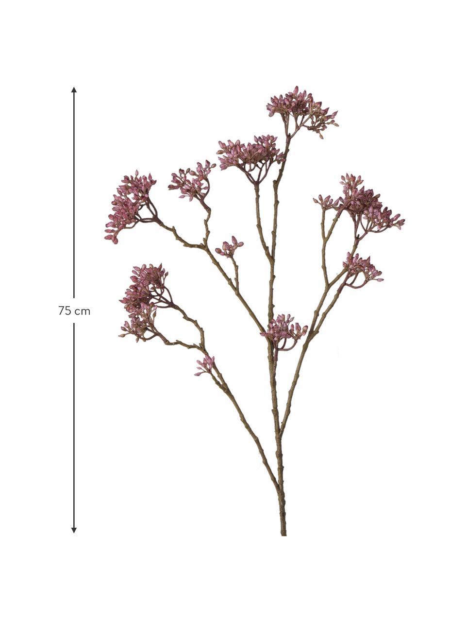 Flor artificial Hartriegel, Plástico, Rosa, marrón, L 75 cm