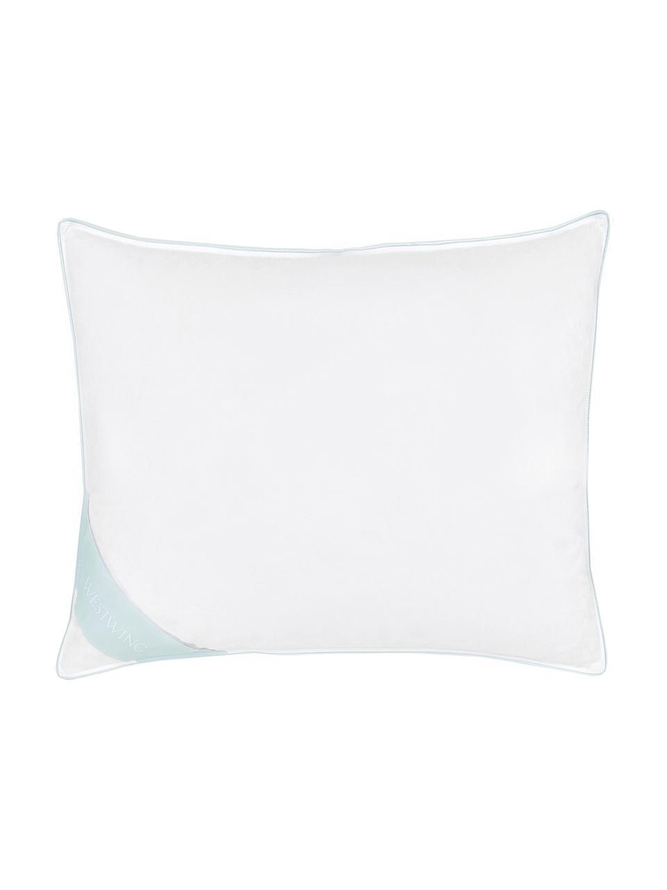 Veren hoofdkussen Comfort, medium, Wit met turquoise satijnen bies, 60 x 70 cm