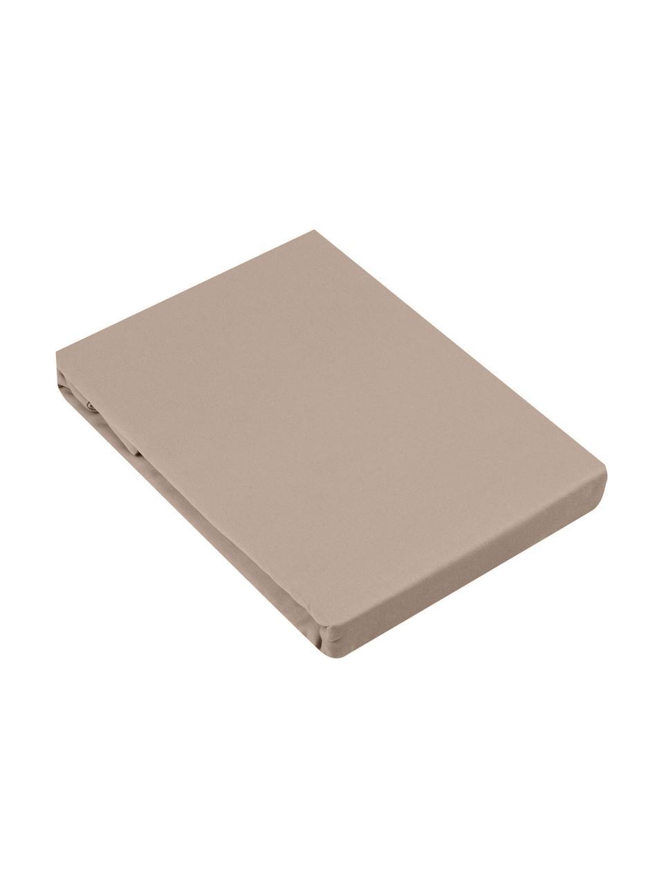 Spannbettlaken Comfort in Taupe, Baumwollsatin, Webart: Satin, leicht glänzend, Taupe, 180 x 200 cm