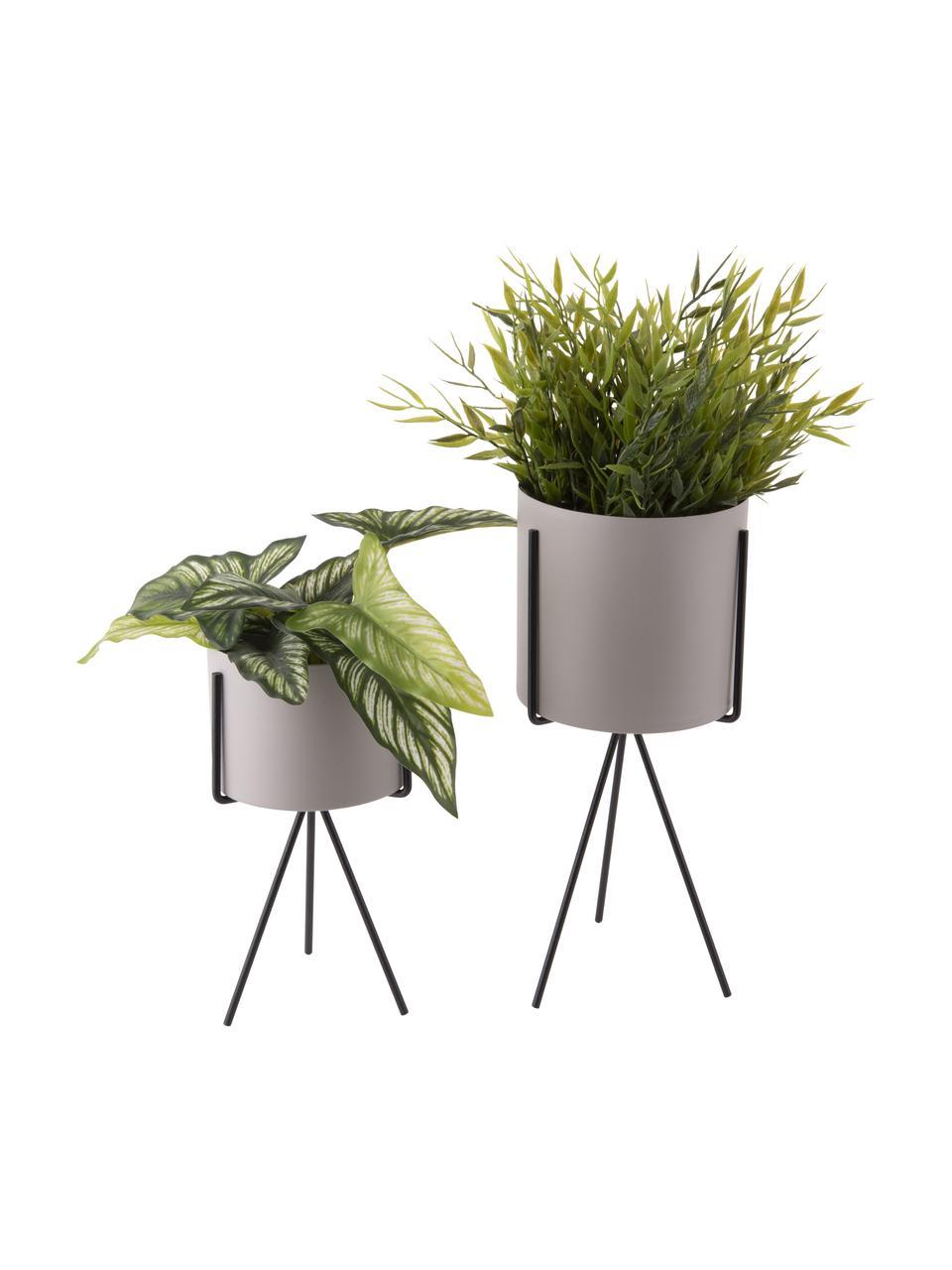 Kleine plantenpottenset Pedestal van metaal, 2-delig, Gecoat metaal, Wit, zwart, Set met verschillende formaten