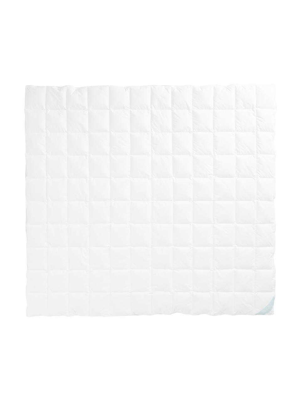 Edredón de plumon Komfort, extra ligero, Funda: 100%algodón, sarga de Ma, Blanco, Cama 150/160 cm (240 x L 220 cm)