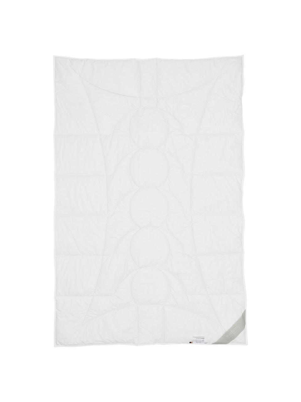 Wegańska kołdra z kapoka i bawełny, lekka, Tapicerka: 100% bawełna, Biały, S 240 x D 220 cm