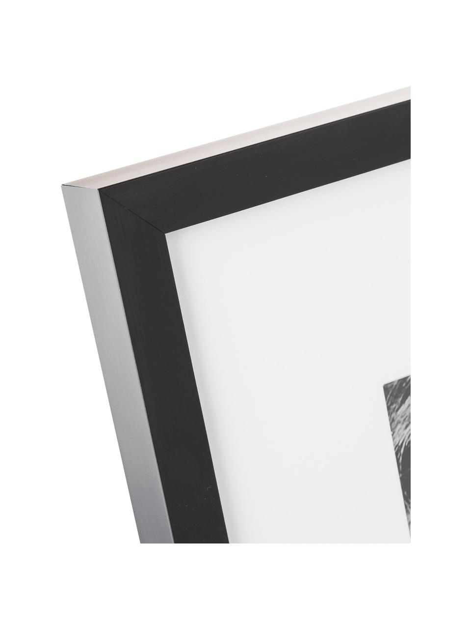 Stampa digitale incorniciata Lion Close Up, Immagine: stampa digitale, Cornice: telaio in materiale sinte, Nero, bianco, L 40 x A 40 cm