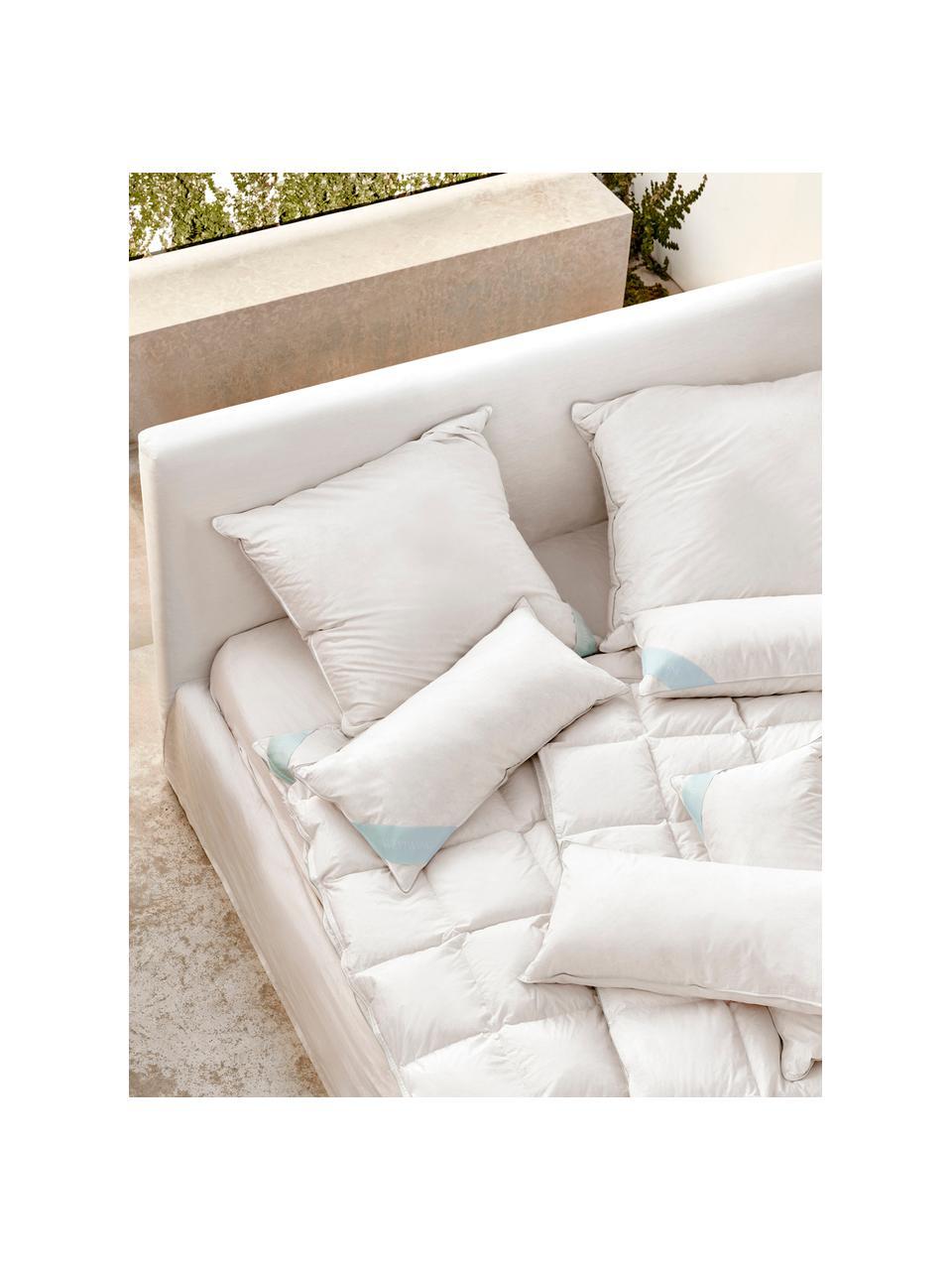 Poduszka z pierza Comfort, miękka, Biały z turkusową satynową lamówką, S 40 x D 80 cm