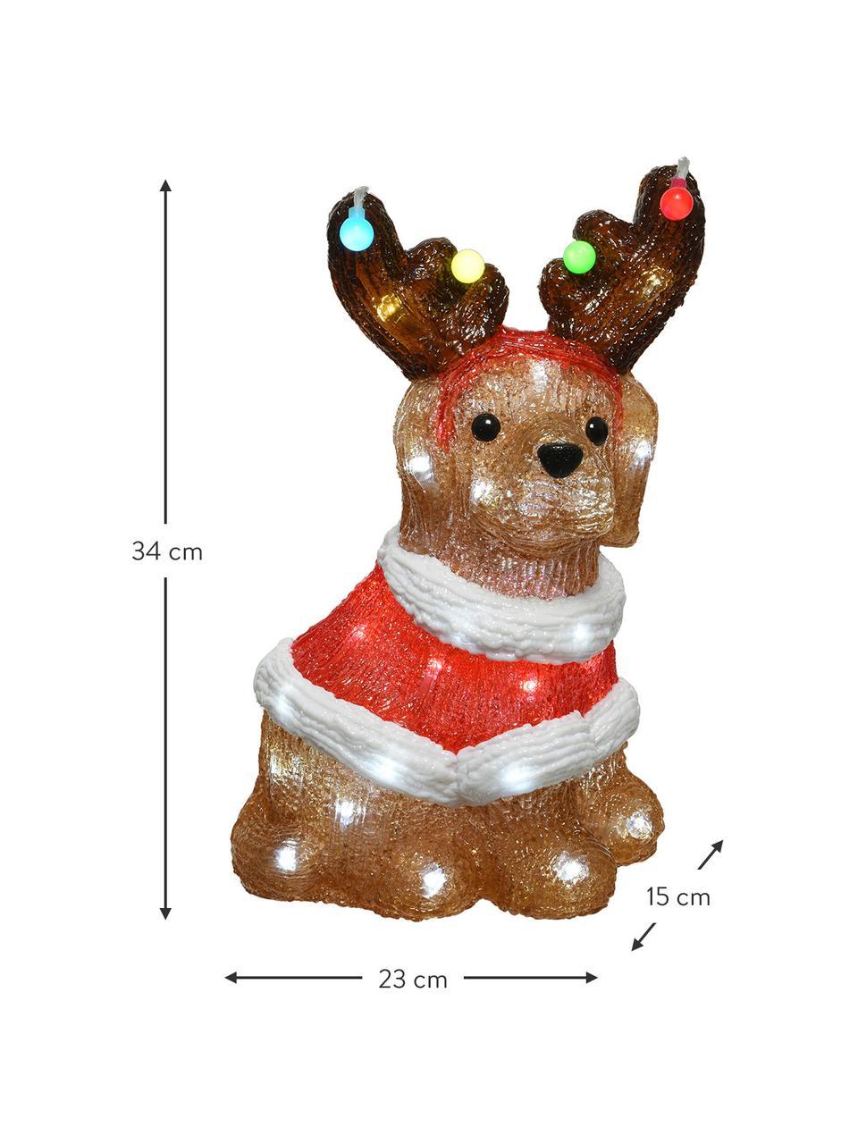 LED Leuchtobjekt Dog H 34 cm, mit Stecker, Kunststoff, Braun, Mehrfarbig, 23 x 34 cm