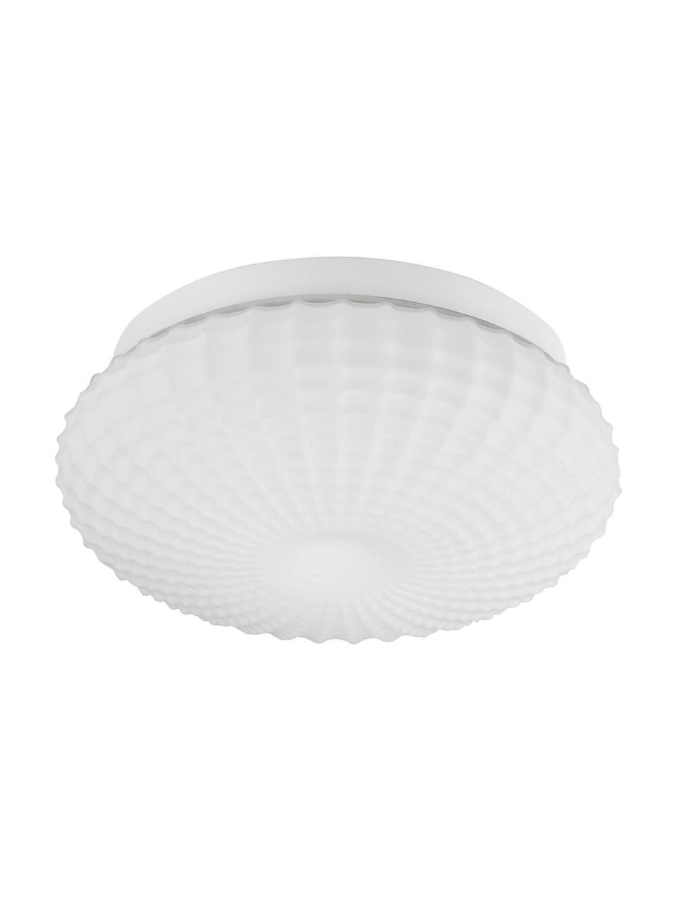 Plafoniera piccola in vetro Clam, Paralume: vetro, Baldacchino: acciaio rivestito, Bianco, Ø 30 x Alt. 12 cm