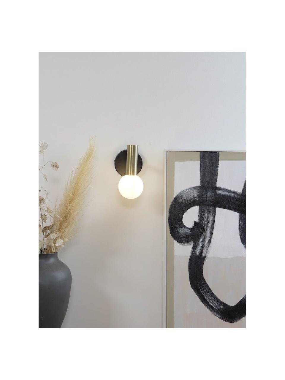 Applique con paralume in vetro Wilson, Paralume: vetro smerigliato, Nero, dorato, Larg. 10 x Alt. 22 cm