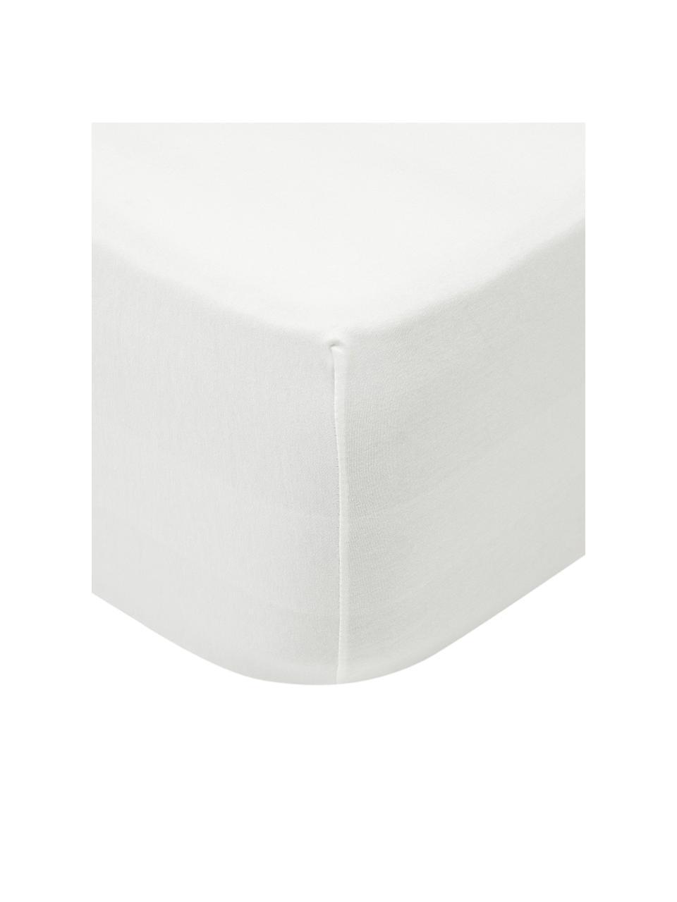 Spannbettlaken Lara in Cremefarben, Jersey-Elasthan, 95% Baumwolle, 5% Elasthan, Cremefarben, 180 x 200 cm