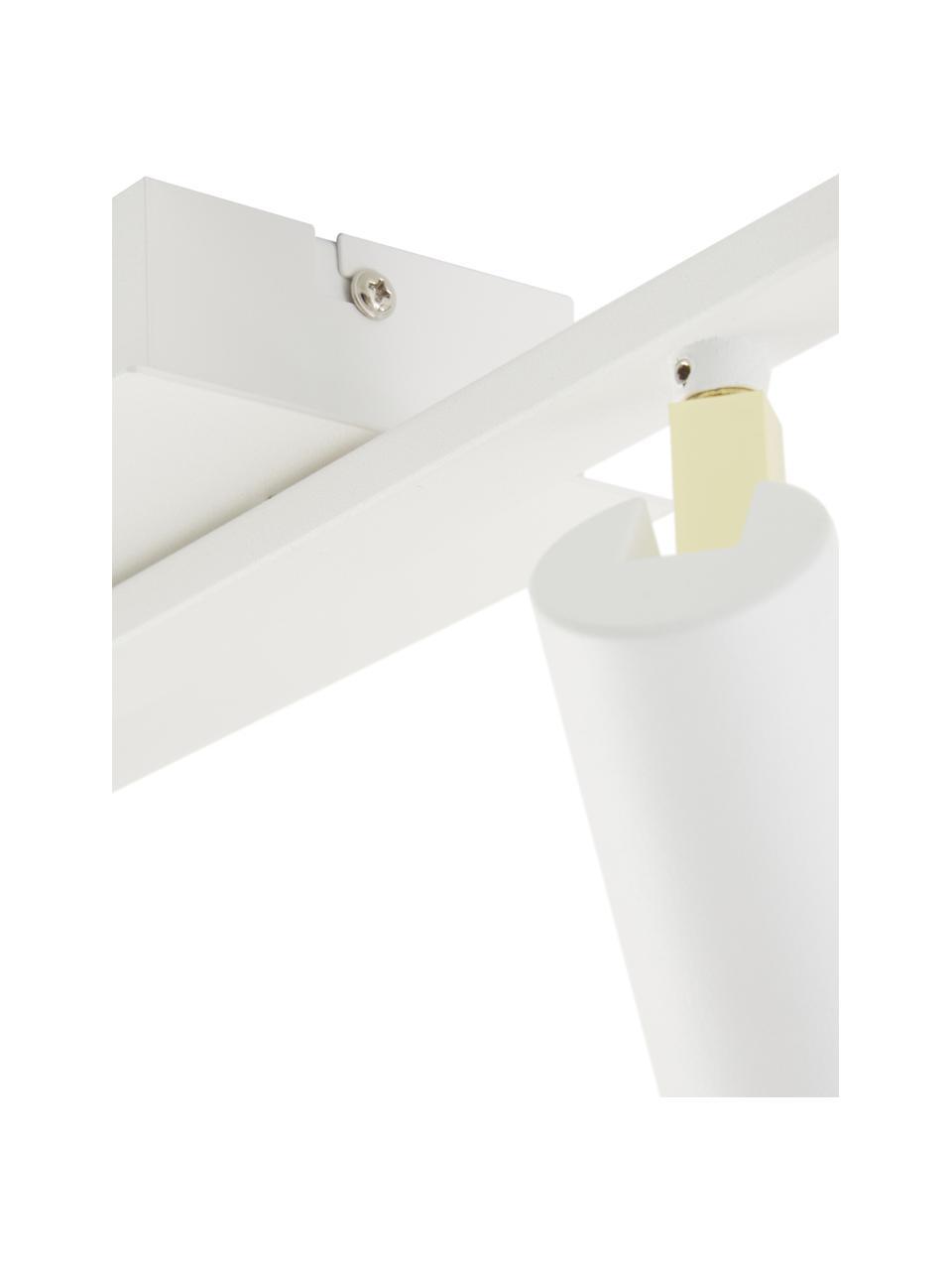 Faretti a LED da soffitto color bianco-oro Bobby, Paralume: metallo verniciato a polv, Baldacchino: metallo verniciato a polv, Struttura: metallo verniciato a polv, Bianco, Larg. 47 x Alt. 13 cm