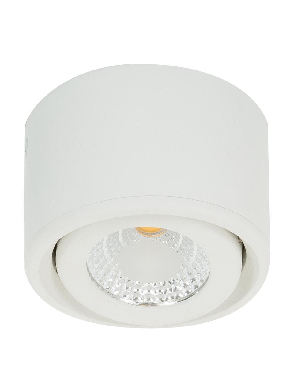 Spot plafond LED blanc Anzio, Blanc