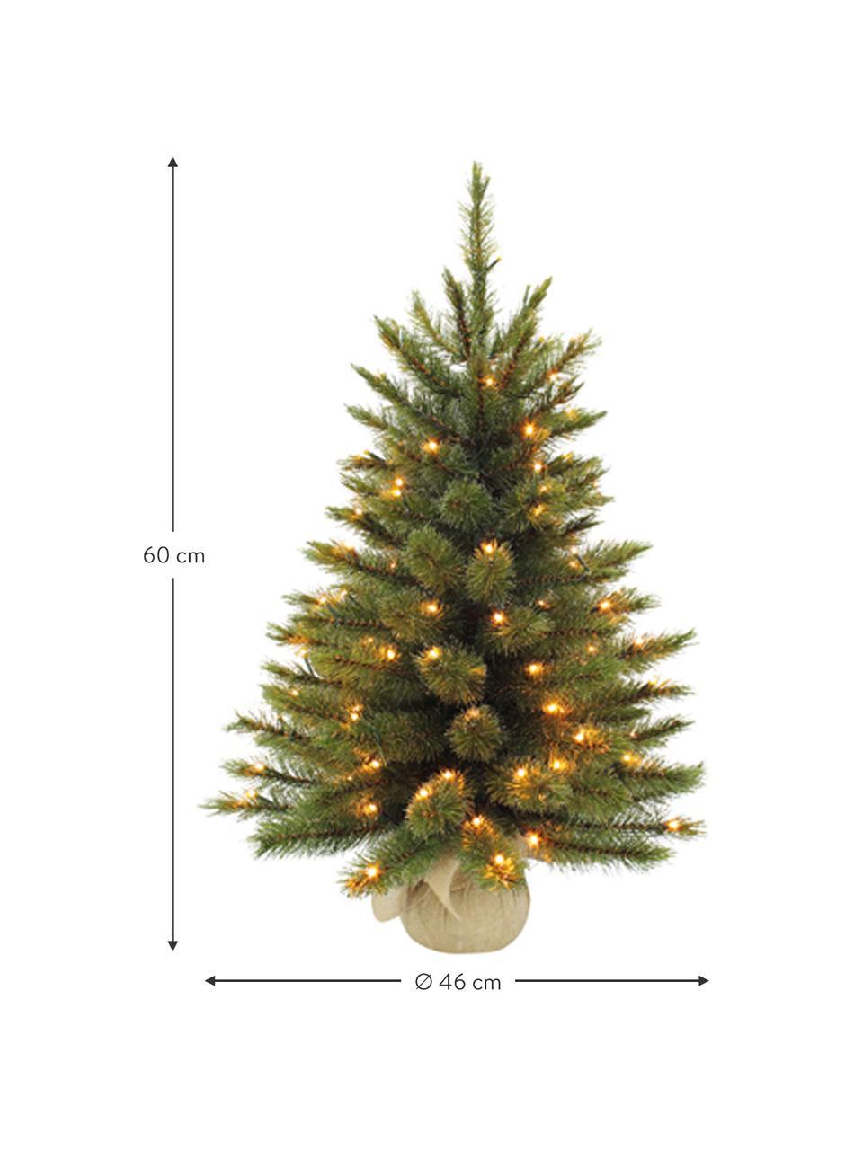 Albero di Natale piccolo con luci LED Forest, Verde, Ø 61 x Alt. 90 cm