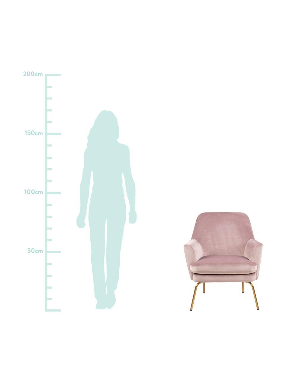 Samt-Cocktailsessel Chisa in Rosa, Bezug: Polyestersamt Der hochwer, Beine: Metall, lackiert, Samt Rosa, B 68 x T 73 cm