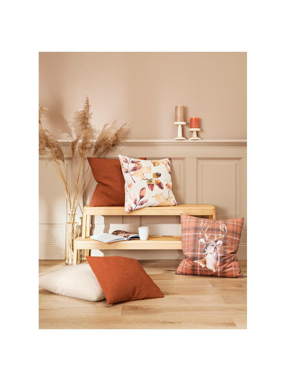 Samt-Wendekissenhülle Eichel mit herbstlichem Print, Polyestersamt, Creme, Rot- und Brauntöne, 50 x 50 cm