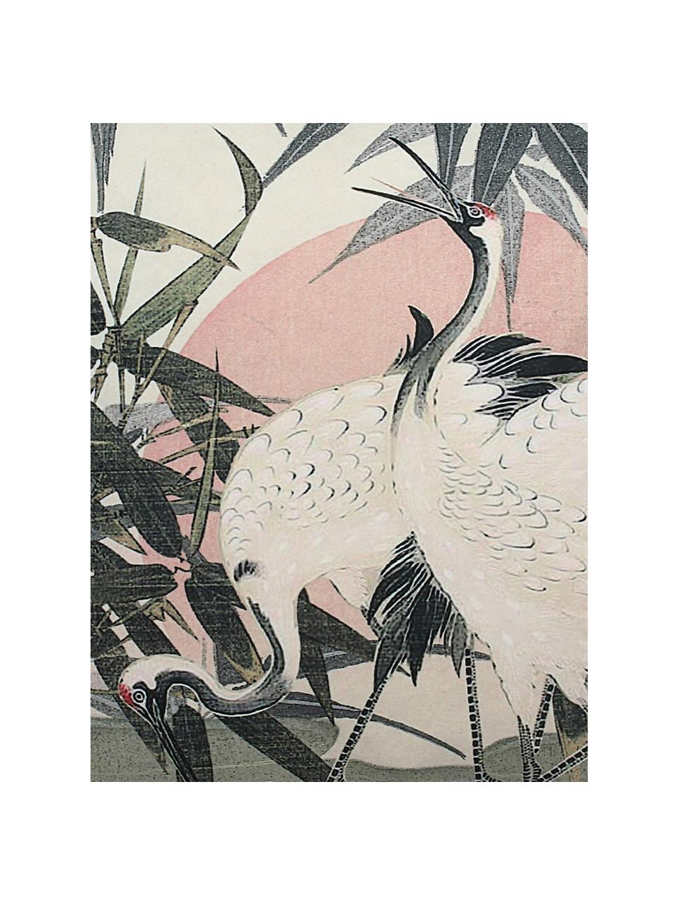 Samt-Kissen Tripo mit goldenem Keder, mit Inlett, 100% Polyestersamt, Mehrfarbig, 45 x 45 cm