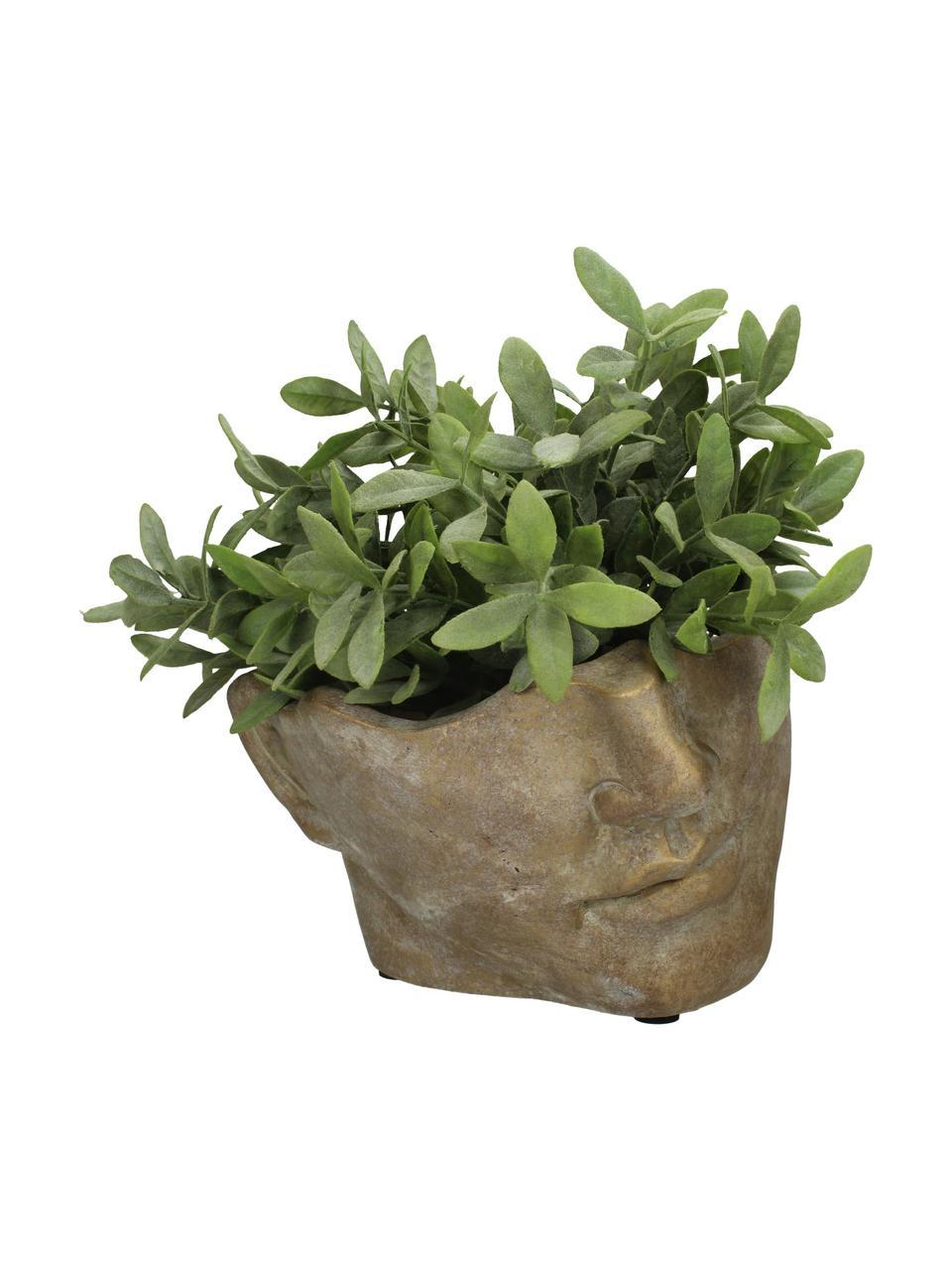 Portavaso viso di design in cemento Fluorite, Cemento, Dorato, Larg. 22 x Alt. 14 cm