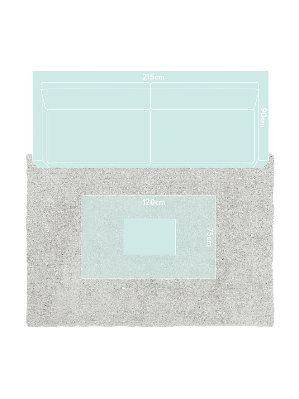Tappeto peloso morbido grigio chiaro Leighton, Retro: 70% poliestere, 30% coton, Grigio chiaro, Larg. 80 x Lung. 150 cm (taglia XS)