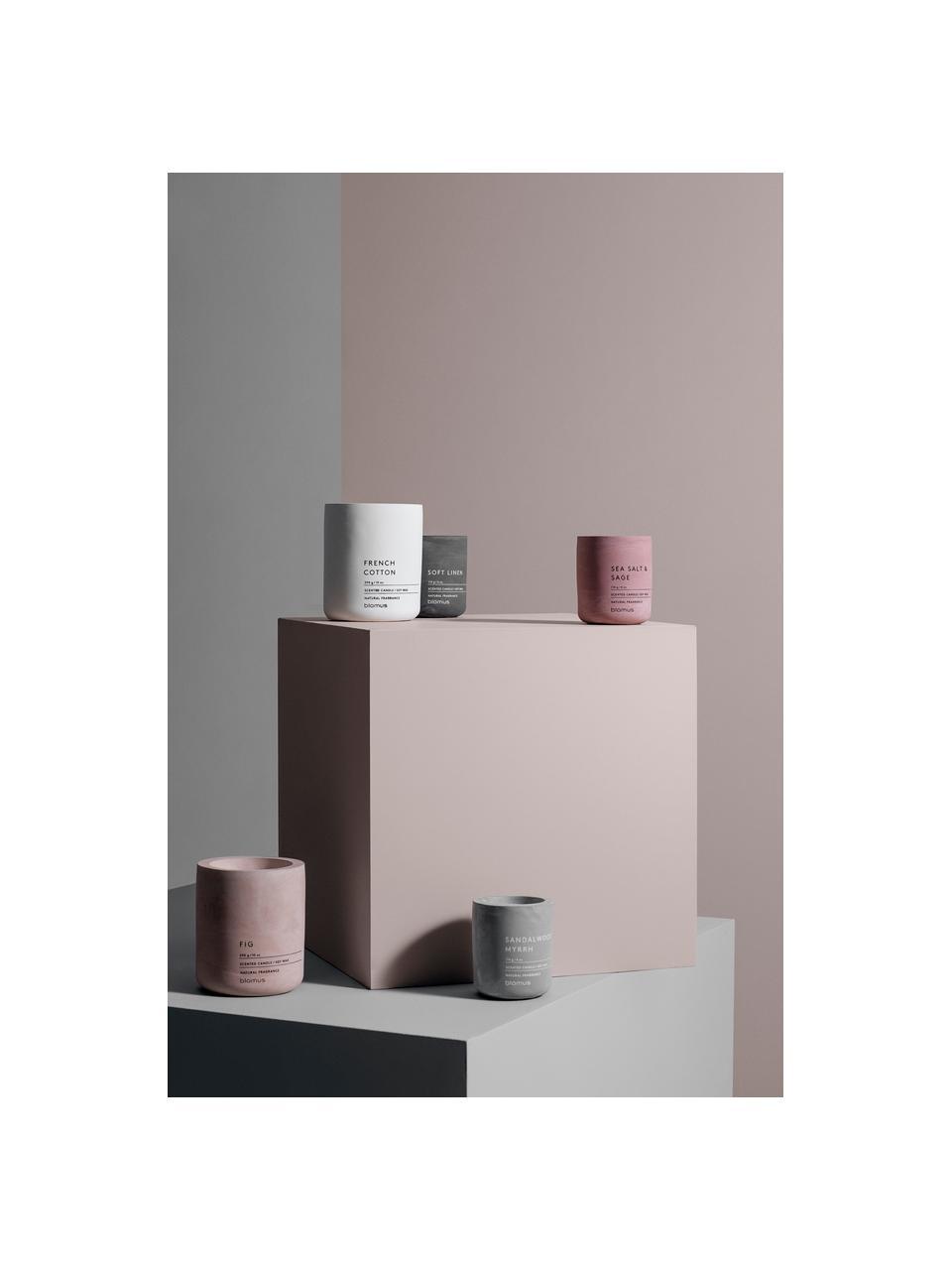 Candela profumata Fraga (salvia & erbe aromatiche), Contenitore: cemento, Salvia & Erbe, Ø 7 x Alt. 8 cm