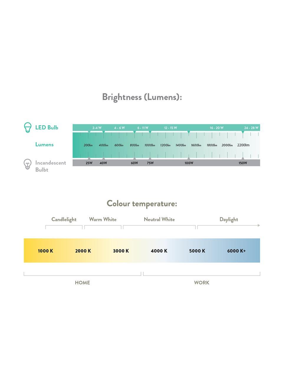 Lampadina E27, 5W, dimmerabile, bianco caldo, 1 pz, Paralume: vetro, Base lampadina: metallo, Grigio trasparente, Ø 10 x Alt. 14 cm