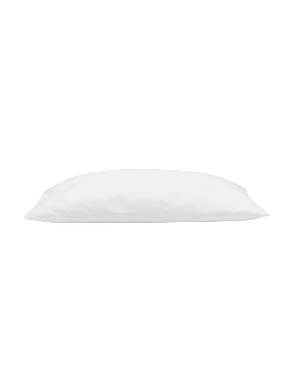 Imbottitura cuscino in microfibra Sia, 40 x 40, Bianco, Larg. 40 x Lung. 40 cm