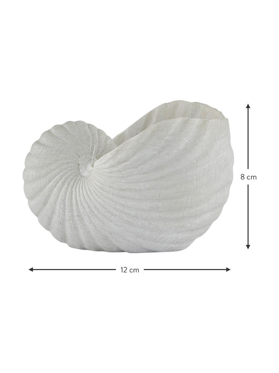 Kleines Deko-Objekt Serafina Shell, Kunststoff, Weiß, 12 x 8 cm