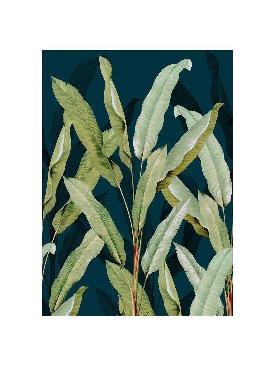 Adesivo murale oliva Branch, Tessuto non tessuto, Blu, verde, Larg. 200 x Alt. 280 cm