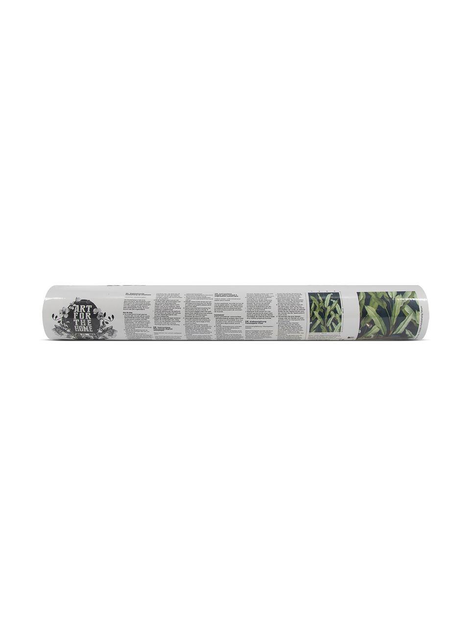 Fototapete Olive Branch, Vlies, Blau, Grün, 200 x 280 cm