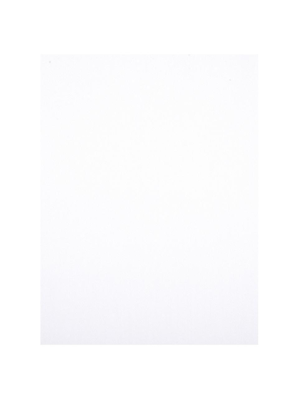 Set lenzuola in raso di cotone bianco Comfort, Tessuto: raso Densità del filo 250, Bianco, 240 x 300 cm + 2 cuscini 50 x 80 cm
