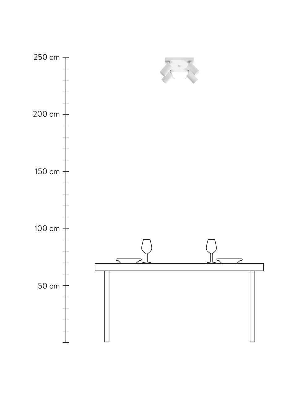 Faretti da soffitto bianchi Etna, Paralume: acciaio verniciato, Baldacchino: acciaio verniciato, Bianco, Larg. 25 x Alt. 15 cm