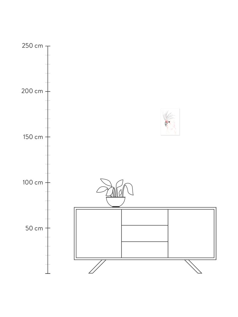 Poster Kakadu, Digitale print op papier, 200 g/m², Wit, grijs, roze, 30 x 42 cm