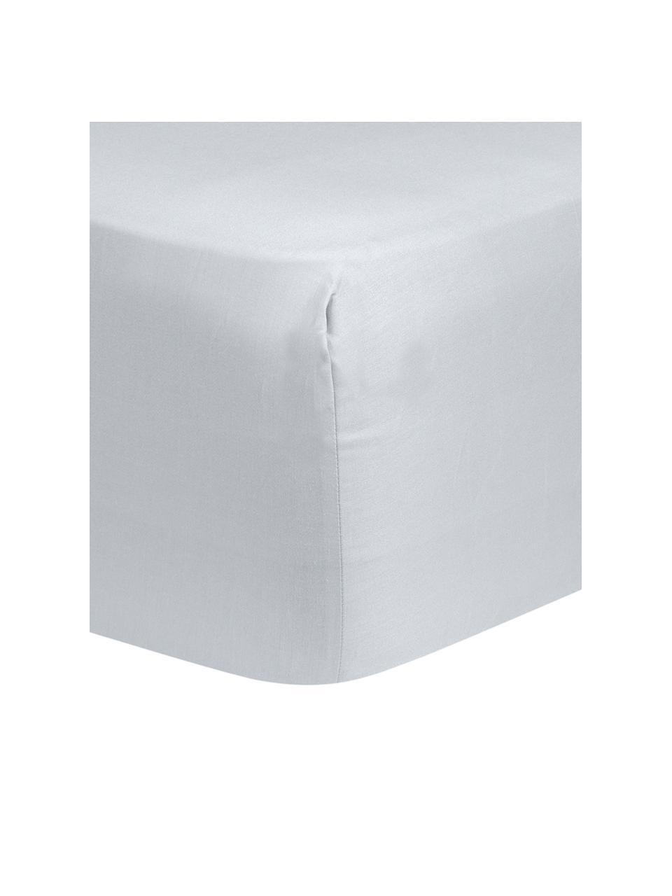 Lenzuolo con angoli in raso di cotone grigio chiaro Comfort, Grigio chiaro, Larg. 200 x Lung. 200 cm