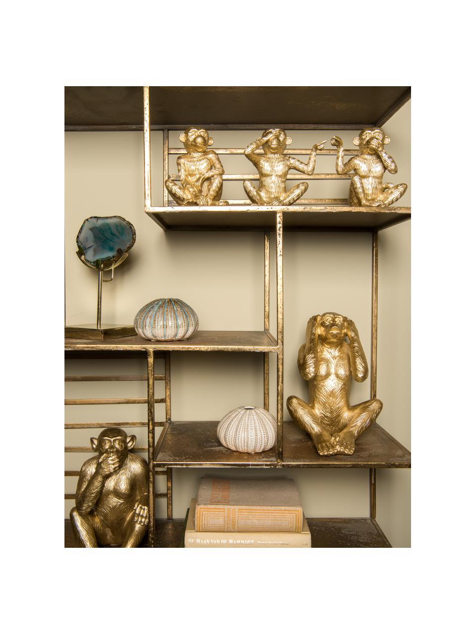 Oggetto decorativo Monkey, Poliresina, Dorato, Larg. 15 x Alt. 15 cm