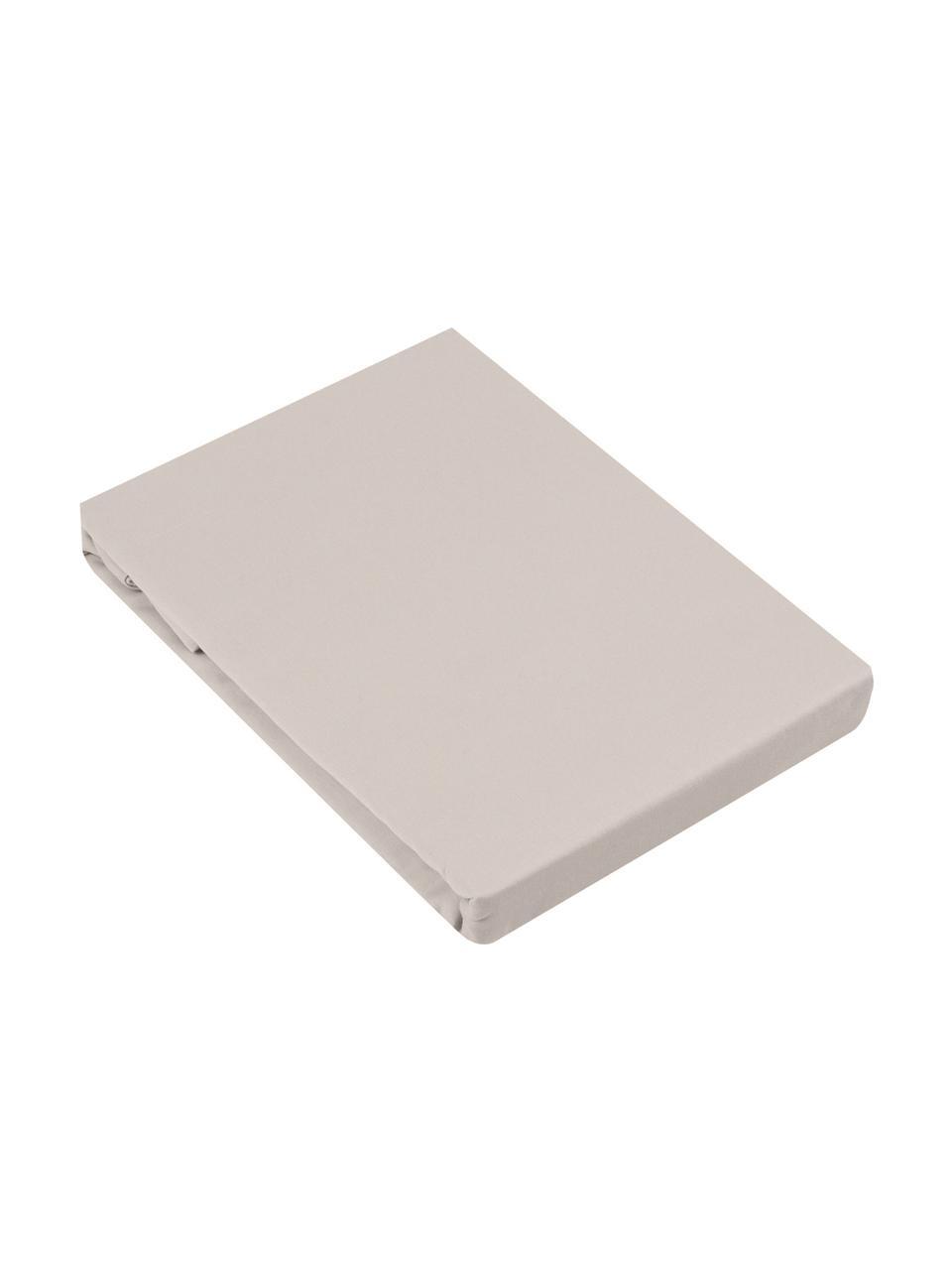 Lenzuolo con angoli in raso di cotone color taupe Comfort, Taupe, Larg. 180 x Lung. 200 cm