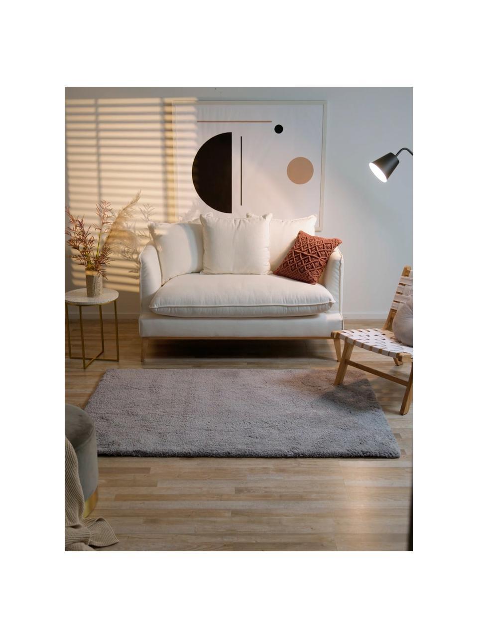 Načechraný koberec s vysokým vlasem Leighton, Šedá
