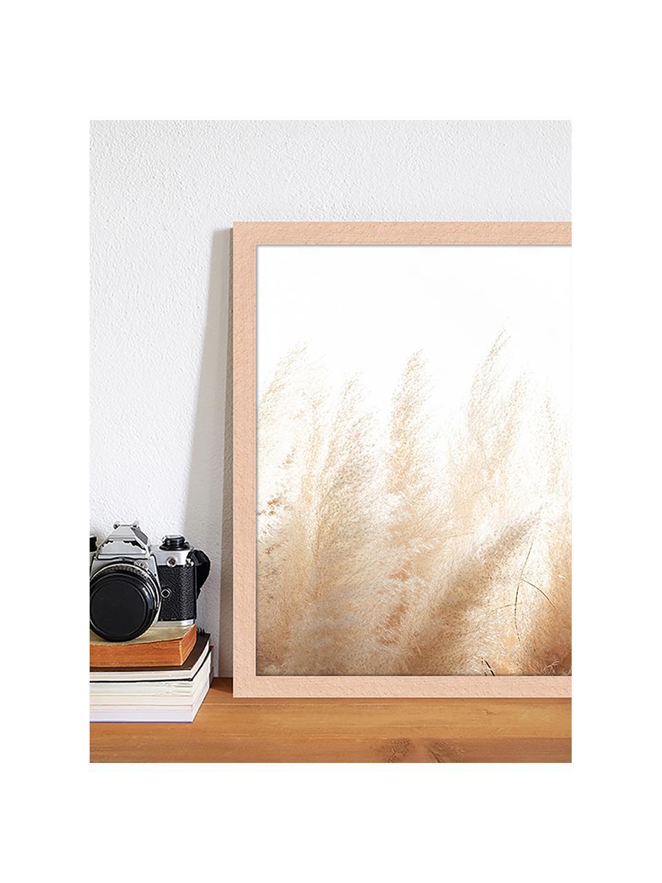 Ingelijste digitale print Pampa Grass, Afbeelding: digitale print op papier,, Lijst: gelakt hout, Multicolour, 33 x 43 cm
