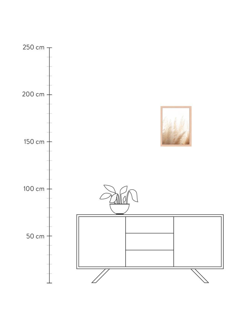 Stampa digitale incorniciata Pampa Grass, Immagine: stampa digitale su carta,, Cornice: legno verniciato, Multicolore, Larg. 33 x Alt. 43 cm