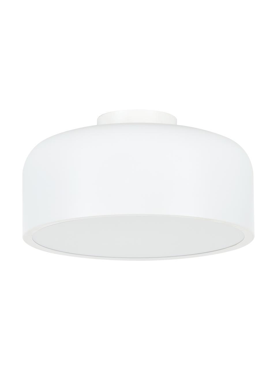 Plafondlamp Ole van metaal, Lampenkap: gepoedercoat metaal, Baldakijn: gepoedercoat metaal, Diffuser: acryl, Mat wit, Ø 35 x H 18 cm