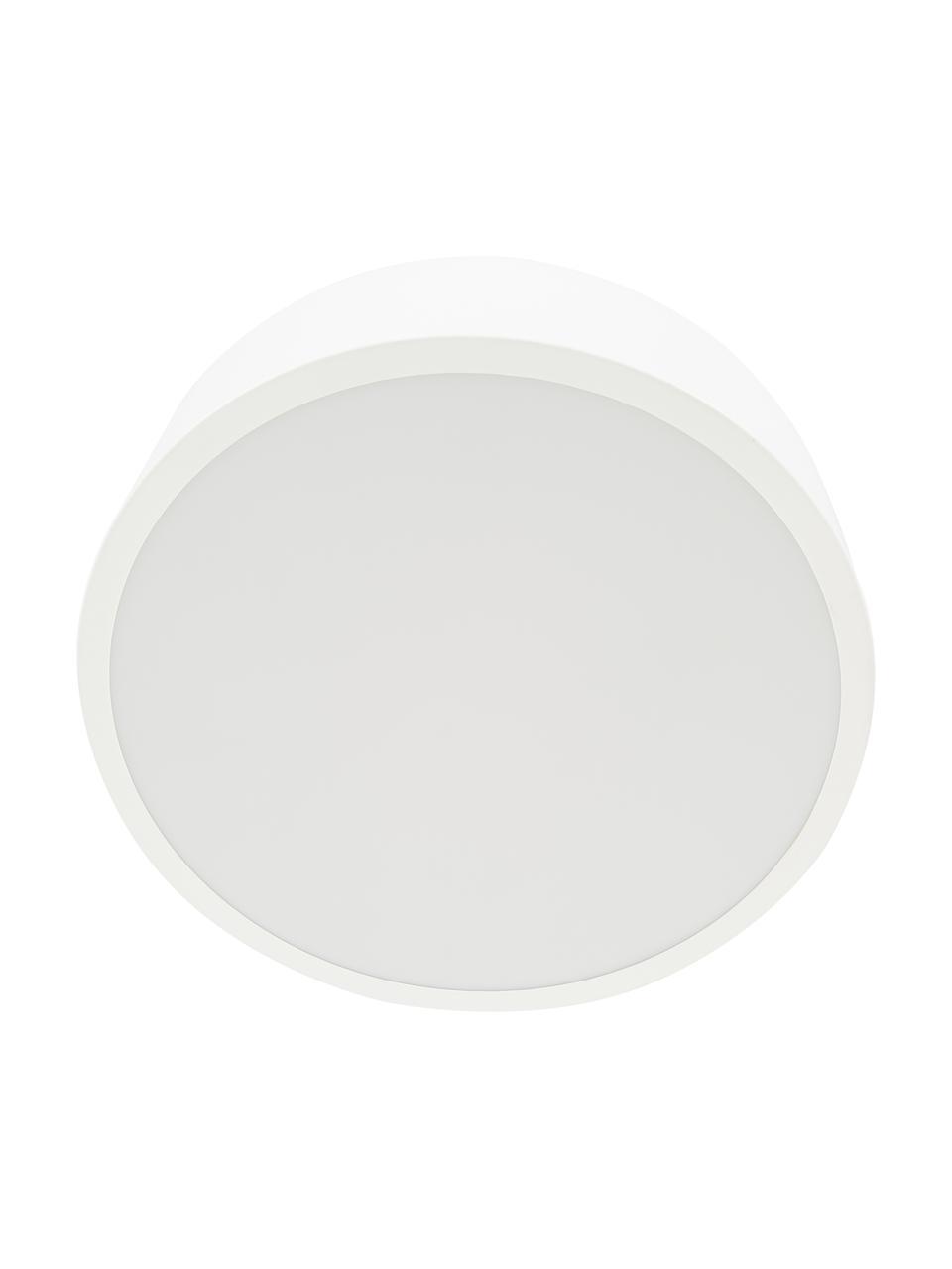 Plafoniera stile nordico in metallo Ole, Paralume: metallo verniciato a polv, Baldacchino: metallo verniciato a polv, Disco diffusore: acrilico, Bianco opaco, Ø 35 x Alt. 18 cm