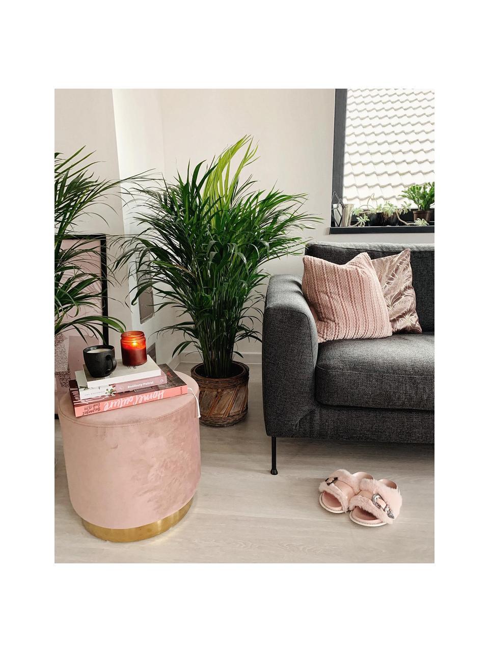 Pouf in velluto rosa Orchid, Rivestimento: velluto (100% poliestere), Struttura: compensato, Velluto rosa, dorato, Ø 38 x Alt. 38 cm