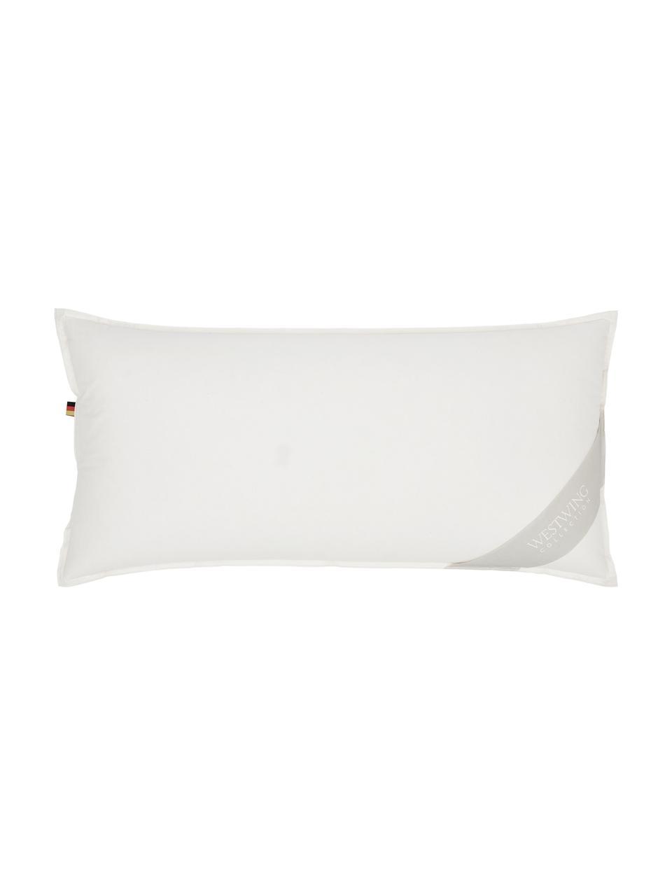Péřový polštář s organickým peřím a organickou bavlnou Comfort, měkký, Béžová