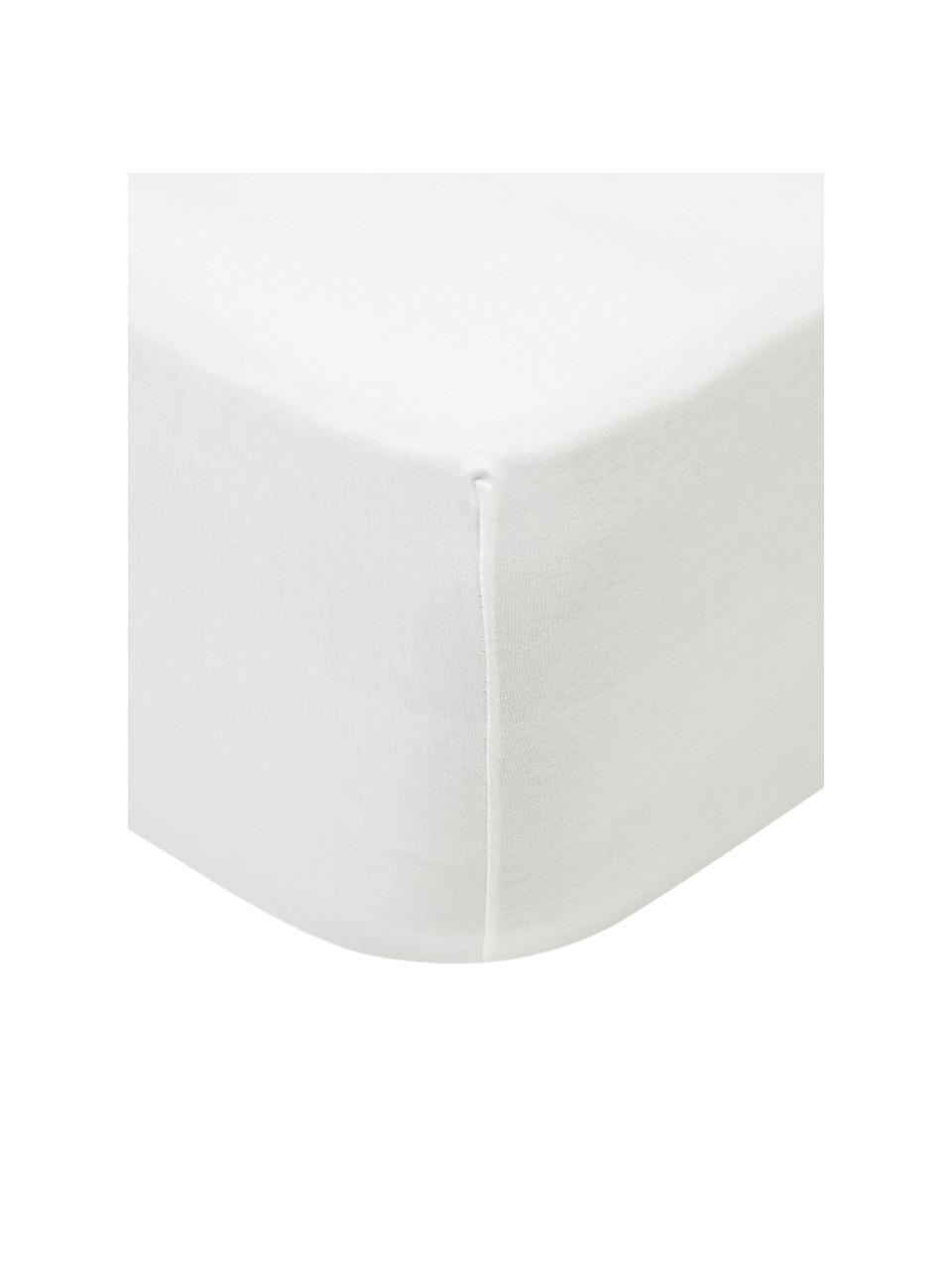 Topper-Spannbettlaken Lara in Cremefarben, Jersey-Elasthan, 95% Baumwolle, 5% Elasthan, Cremefarben, 90 x 200 cm