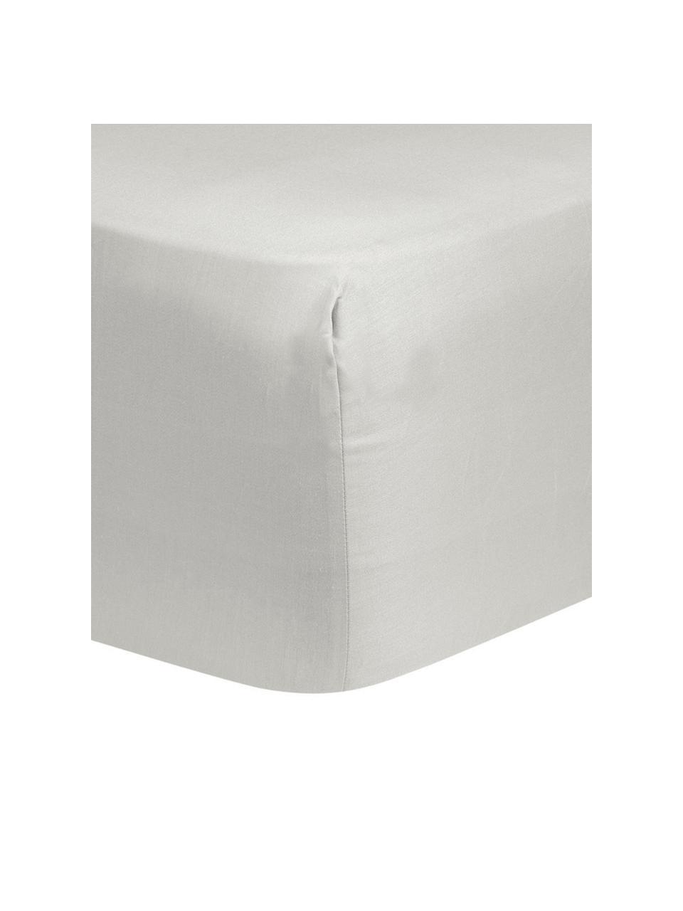 Boxspring-Spannbettlaken Comfort in Hellgrau, Baumwollsatin, Webart: Satin, Hellgrau, 200 x 200 cm