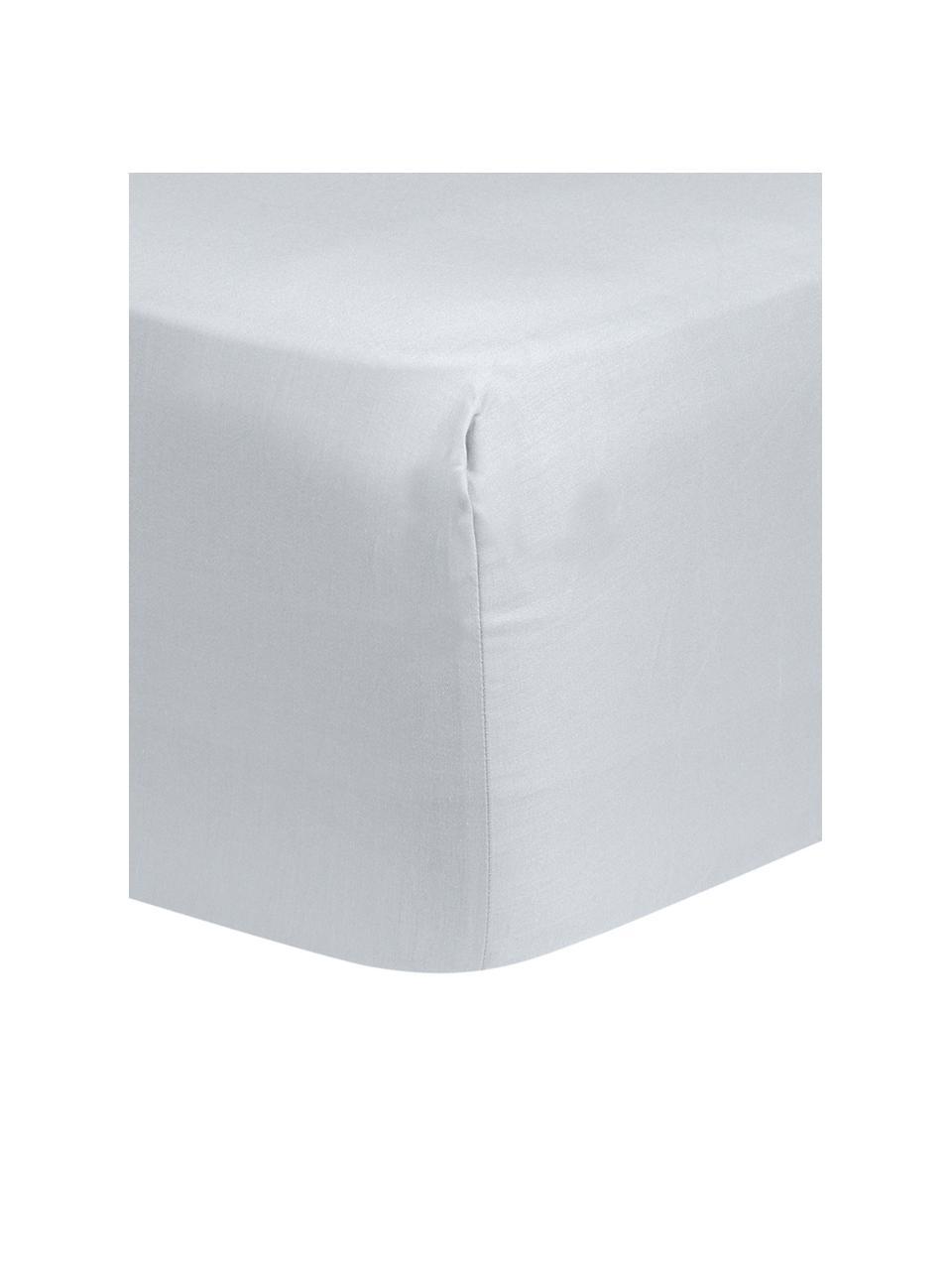 Lenzuolo con angoli in raso di cotone grigio chiaro Comfort, Grigio chiaro, Larg. 180 x Lung. 200 cm