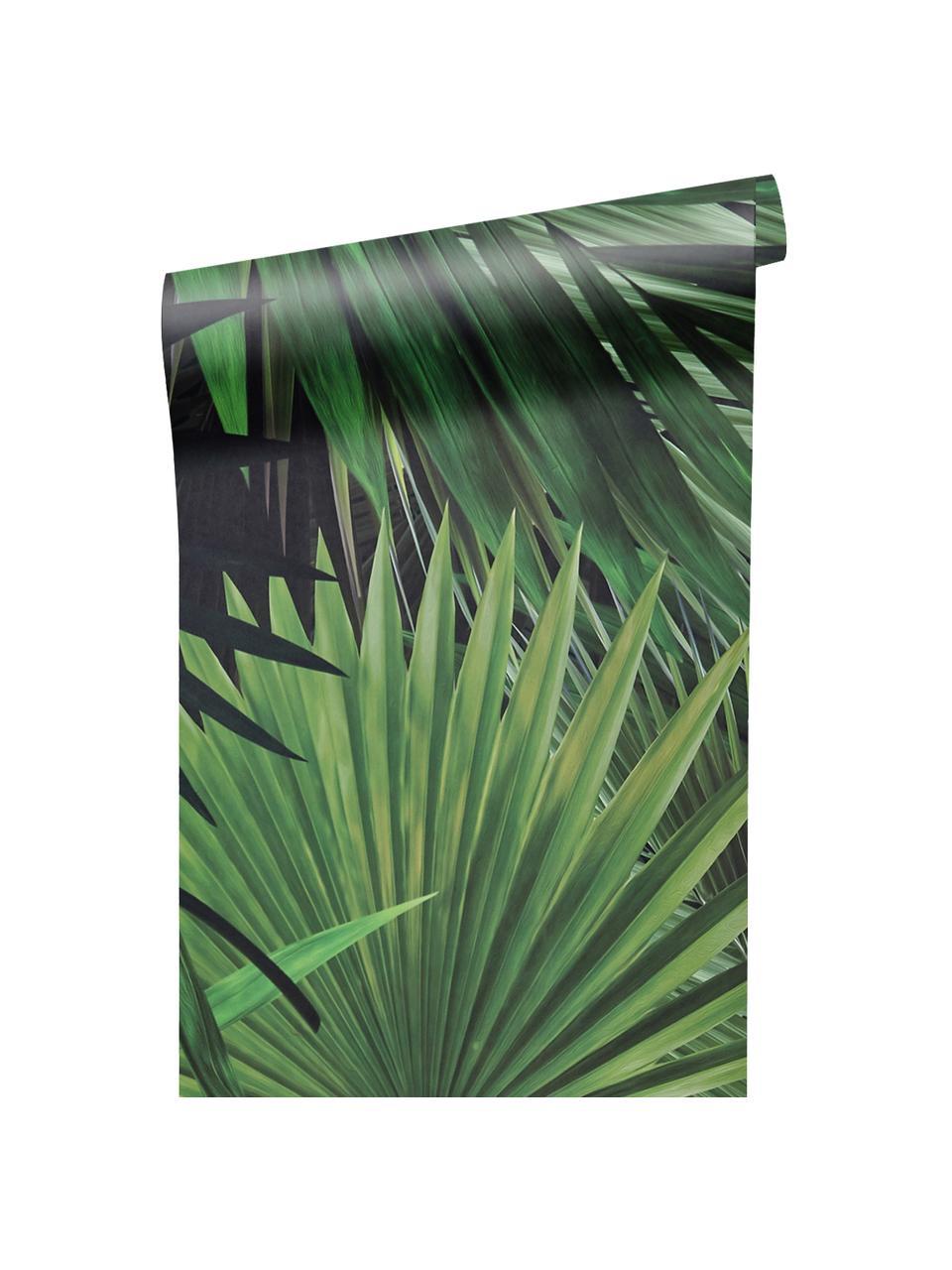 Tapete Palm Leaves, Vlies, umweltfreundlich und biologisch abbaubar, Grün, 98 x 280 cm