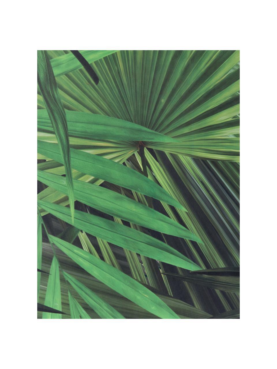 Tapeta Palm Leaves, Włóknina, przyjazna dla środowiska i biodegradowalna, Zielony, 98 x 280 cm