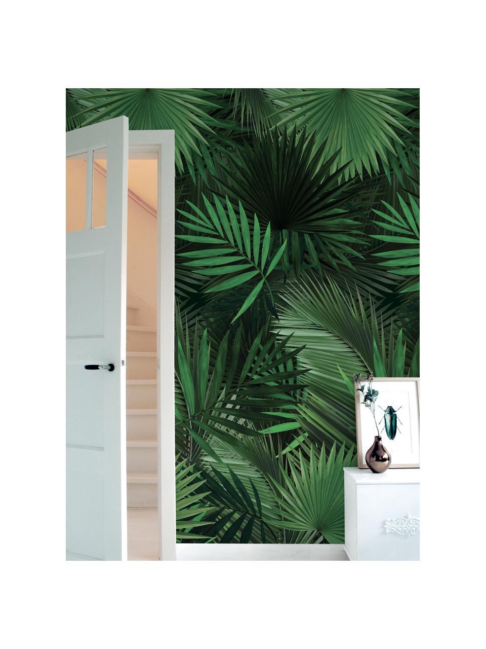 Behang Palm Leaves, Vlies, milieuvriendelijk en biologisch afbreekbaar, Groen, 98 x 280 cm
