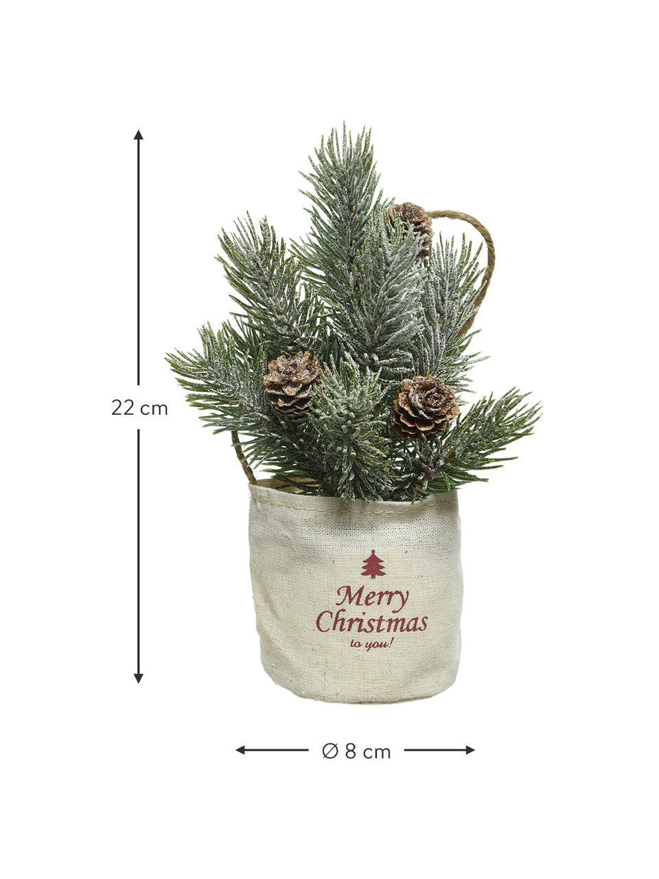 Künstliche Mini-Weihnachtsbäume Mibam H 22 cm, 2 Stück, Beutel: Jute, Grün, Braun, Beige, Ø 8 x H 22 cm