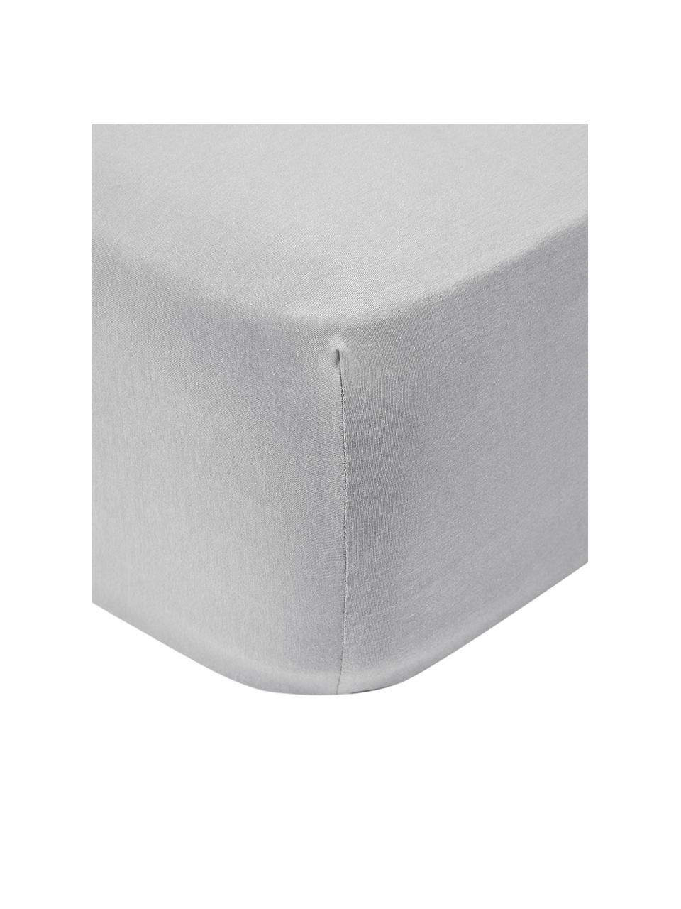 Lenzuolo con angoli in jersey-elastan grigio chiaro Lara, 95% cotone, 5% elastan, Grigio chiaro, Larg. 140 x Lung. 200 cm