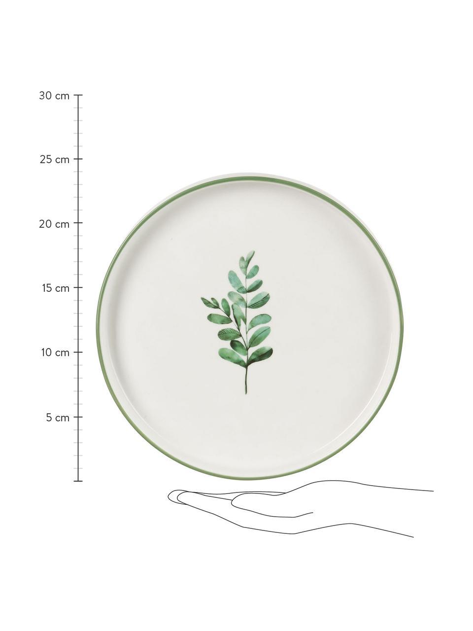 Piattino da dessert Eukalyptus 4 pz, New bone china, Bianco, verde, Ø 24 cm