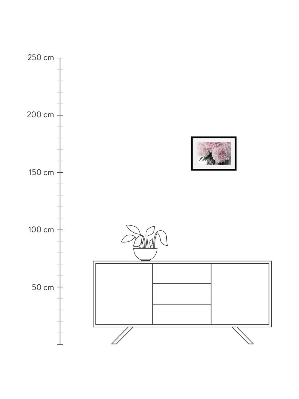 Stampa digitale incorniciata Pink Flowers, Immagine: stampa digitale, Cornice: struttura di legno reale, Immagine: rosa, bianco, verde scuro Cornice: nero, L 40 cm x A 30 cm
